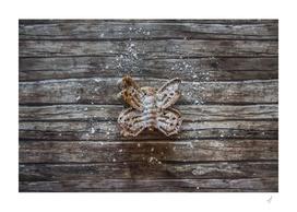 Sweet bugs II