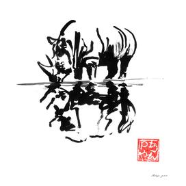 rhinoceros reflexion