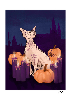 Halloween Sphynx - Candles and Pumpkins in Front of a Castle