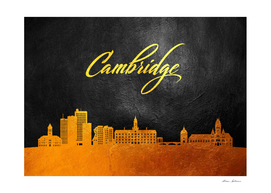 Cambridge Massachusetts Gold Skyline