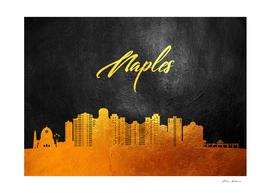 Naples Florida Gold Skyline