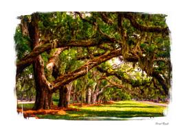 LIne of Oaks Art
