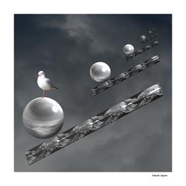 One Legged Seagull