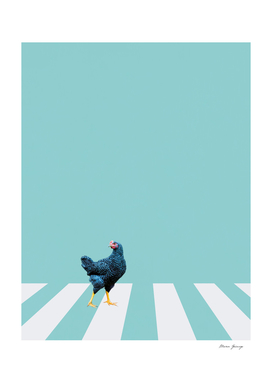 MG0759 chicken run