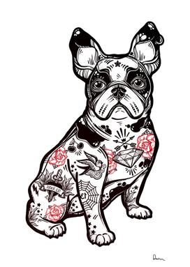 french bulldog dog breed puppy american bully pug