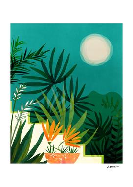 Tropical Moonlight