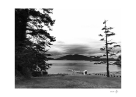Anacortes Washington Fidalgo Island Washington Park