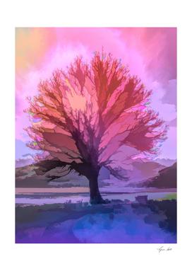 The Plane Tree