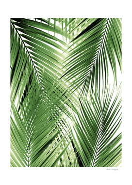 Green Palm Leaves Dream - Cali Summer Vibes #2 #tropical