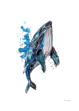 Blue Humpback Whale