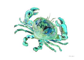 Turquoise Space Crab