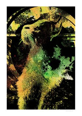 Chaser (graffiti tabby cat portrait)
