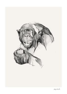 Seven Monkeys – Gluttony