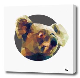 Koala-la-la-laa