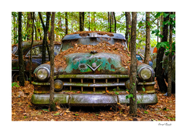 Old Caddy into Trees