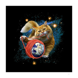 kitty's got the world in her paw