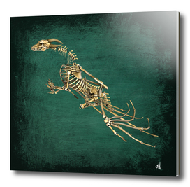 Dragon Skeleton and Green Slate