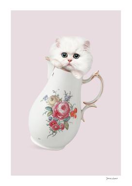 CAT IN A CAN