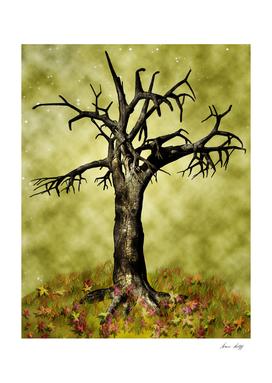 Leafless Maple Tree