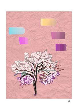 Cherry Blossom, Springtime, Minimalist, Nature