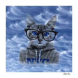NY Cat and Blue Sky