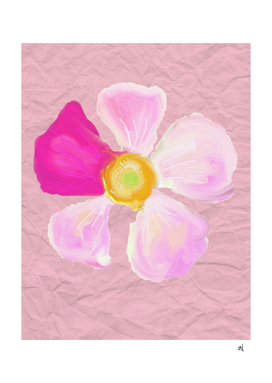 Pink and White Flower, Watercolor on Winkled Paper