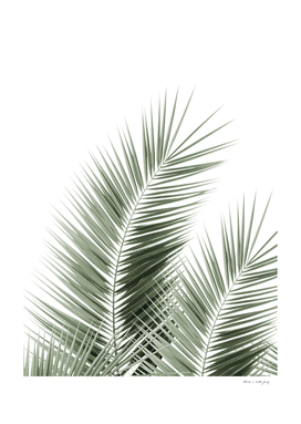Olive Green Palm Leaves Dream - Cali Summer Vibes #1