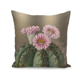 Pink Devil Head Cactus, Desert Flowers, Floral with Bronze