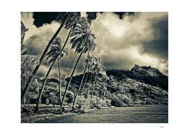 Tahiti's Nostalgia