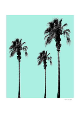 Boho Palm Trees Dream #1 #minimal #tropic #decor #art