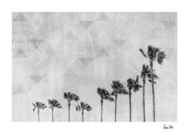 California Vibes | monochrome art