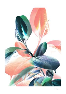 Foliage in Love - Teal & Peach