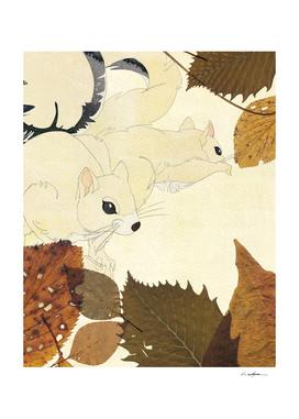 121006-squirrel
