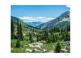 Lumberjack Land Amazing Peaceful Scenery