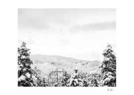 Black and White Skiing Paradise