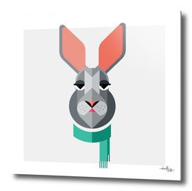 Jackrabbit Illustration