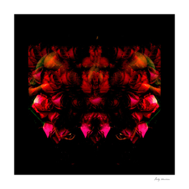 Mythical symmetry1