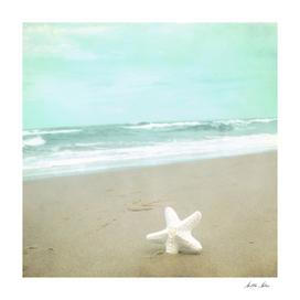 If I were a Star
