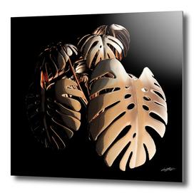 Copper Monsteria