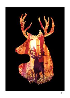 Evening Solace Deer