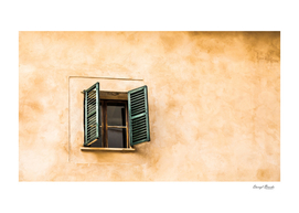 One Window with Green Shutters