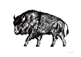 Mandala Buffalo