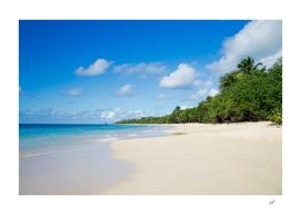 Sandy Beach of Caribbean Island