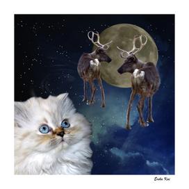 Cat and Reindeers