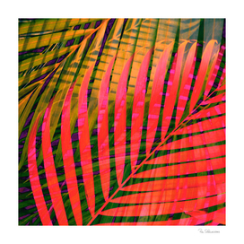 COLORFUL TROPICAL LEAVES no4B