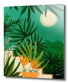 Exotic Garden Nightscape