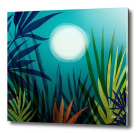 Midnight in the Jungle