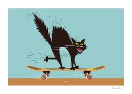 Skater Scater