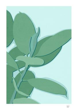 Minimal Rubber Tree Leaves - Greener Eden