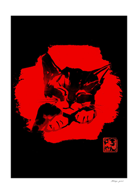 cute cat in red